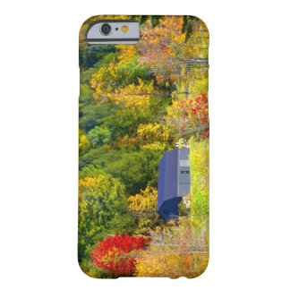 USA Vermont Fall foilage along Highway 100 iPhone 6 Case