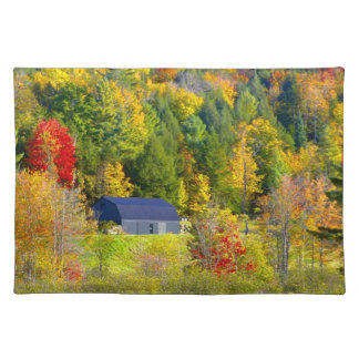 USA, Vermont. Fall foilage along Highway 100. Cloth Placemat