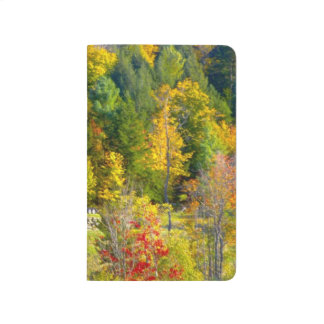 USA, Vermont. Fall foilage along Highway 100. Journals