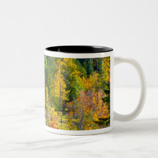 USA, Vermont. Fall foilage along Highway 100. Coffee Mug