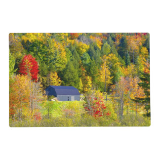 USA, Vermont. Fall foilage along Highway 100. Laminated Place Mat