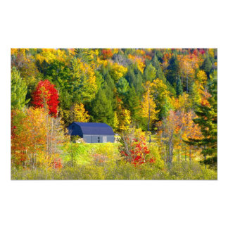 USA, Vermont. Fall foilage along Highway 100. Art Photo