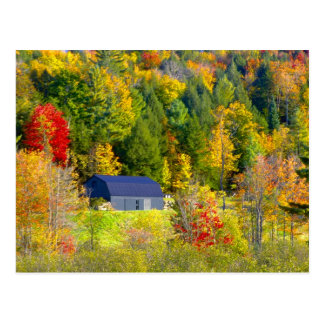 USA, Vermont. Fall foilage along Highway 100. Postcard