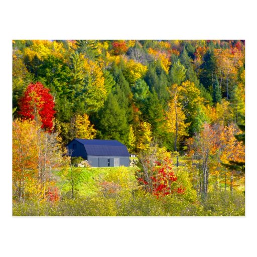 USA, Vermont. Fall foilage along Highway 100. Post Cards