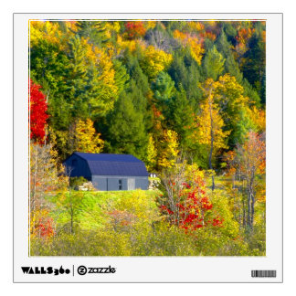 USA, Vermont. Fall foilage along Highway 100. Room Stickers
