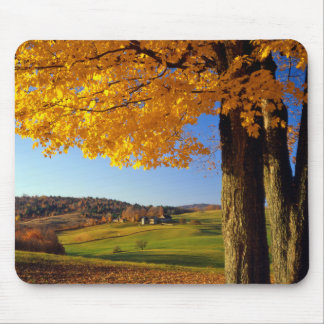 USA, Vermont. Farm Scenic Near South Woodstock Mouse Pad