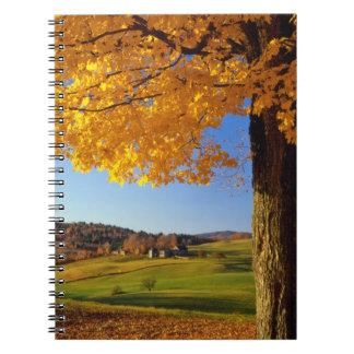 USA, Vermont. Farm Scenic Near South Woodstock Notebook