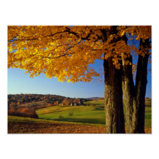 USA, Vermont. Farm Scenic Near South Woodstock Poster