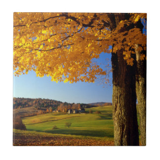 USA, Vermont. Farm Scenic Near South Woodstock Tile