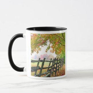 USA, Vermont. Fence under fall foliage. Mug