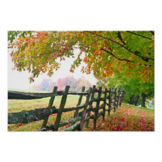 USA, Vermont. Fence under fall foliage. Print
