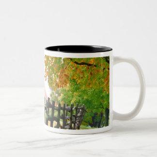 USA, Vermont. Fence under fall foliage. Two-Tone Coffee Mug