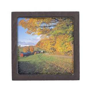 USA, Vermont, Jenne Farm. Fall comes to Jenne Jewelry Box