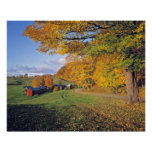 USA, Vermont, Jenne Farm. Fall comes to Jenne Poster