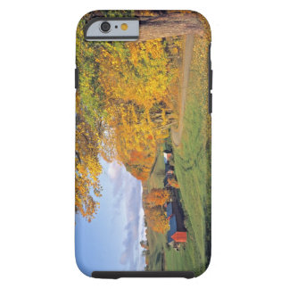 USA, Vermont, Jenne Farm. Fall comes to Jenne Tough iPhone 6 Case