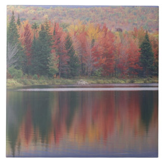 USA, Vermont, McAllister Lake, near Hazens Notch Ceramic Tile