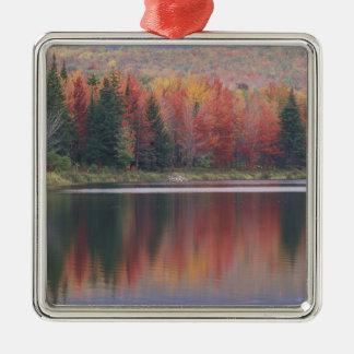USA, Vermont, McAllister Lake, near Hazens Notch Metal Ornament