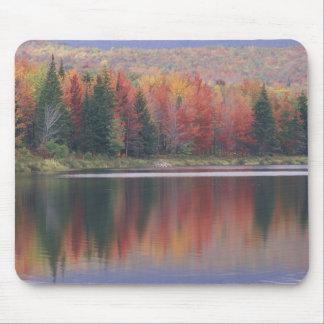 USA Vermont McAllister Lake near Hazens Notch Mouse Pads