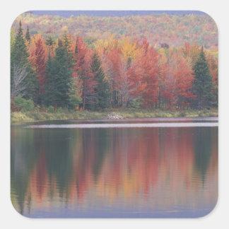 USA, Vermont, McAllister Lake, near Hazens Notch Sticker