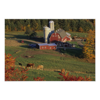 USA, Vermont, Pomfret. Red Barn and fall Poster
