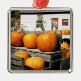 USA, Vermont. Pumpkins Metal Ornament