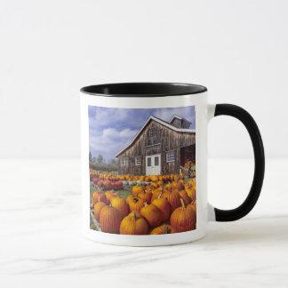 USA, Vermont, Shelbourne, Pumpkins Mug