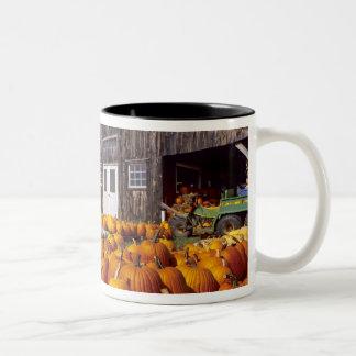 USA, Vermont, Shelbourne, Pumpkins Two-Tone Coffee Mug