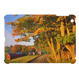 USA, Vermont, South Woodstock Case For The iPad Mini