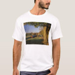 USA, Vermont, south Woodstock, Jenne Farm at T-Shirt