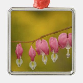 USA, Virginia, Arlington, closeup of pink Metal Ornament
