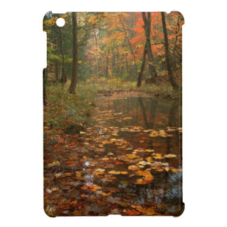 USA, Virginia, Autumn In Douthat State Park Case For The iPad Mini