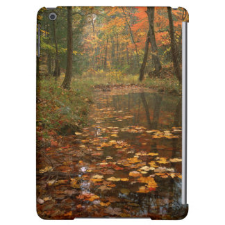 USA, Virginia, Autumn In Douthat State Park Cover For iPad Air