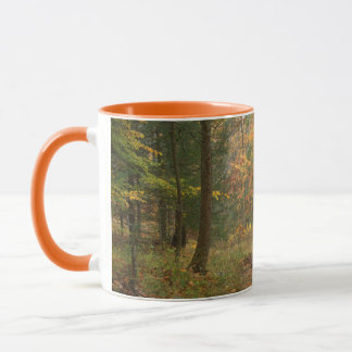 USA, Virginia, Autumn In Douthat State Park Mug
