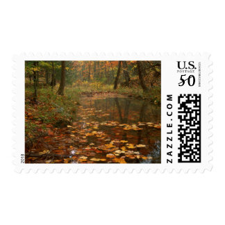 USA, Virginia, Autumn In Douthat State Park Postage