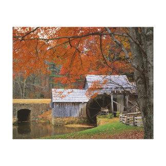 USA, Virginia, Blue Ridge Parkway, Autumn Canvas Prints