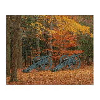 USA, Virginia, Colonial National Historic Park Wood Wall Art