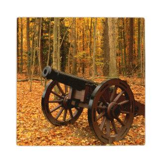 USA, Virginia, Colonial National Historical Wood Coaster