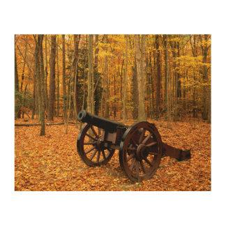 USA, Virginia, Colonial National Historical Wood Wall Art