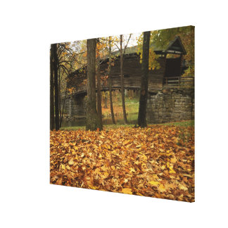 USA, Virginia, Covington, Humpback Covered Canvas Print