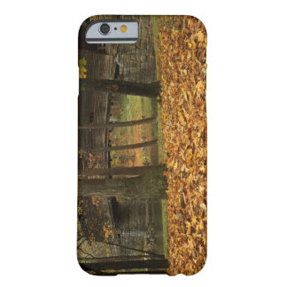 USA, Virginia, Covington, Humpback Covered Barely There iPhone 6 Case