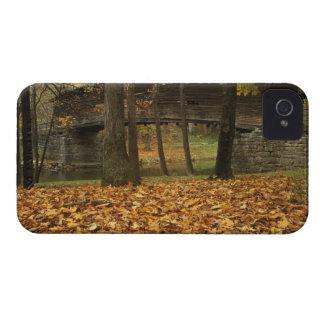 USA, Virginia, Covington, Humpback Covered iPhone 4 Case