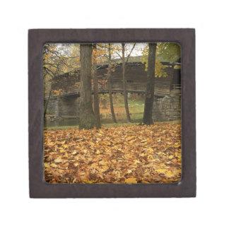 USA, Virginia, Covington, Humpback Covered Gift Box