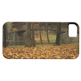 USA, Virginia, Covington, Humpback Covered iPhone SE/5/5s Case