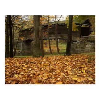 USA, Virginia, Covington, Humpback Covered Postcard
