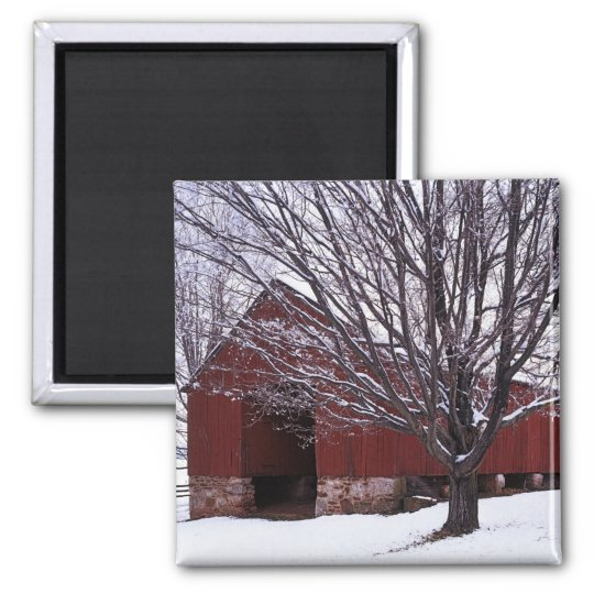 USA, Virginia, Fairfax County, Barn and Maple Magnet
