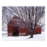USA, Virginia, Fairfax County, Barn and Maple Photo Print