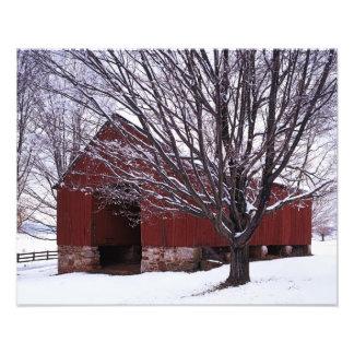 USA, Virginia, Fairfax County, Barn and Maple Photographic Print