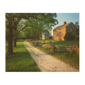 USA, Virginia, Fairfax County, Sully Plantation Wood Canvas