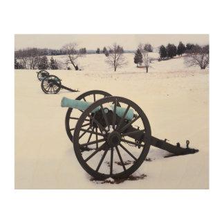 USA, Virginia, Manassas National Battlefield Wood Canvases