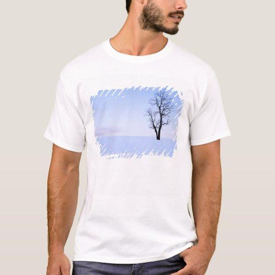 USA, Virginia, Page County, Black Locust T-Shirt